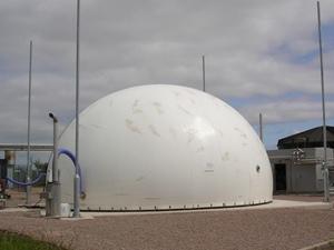 membrane gas holder